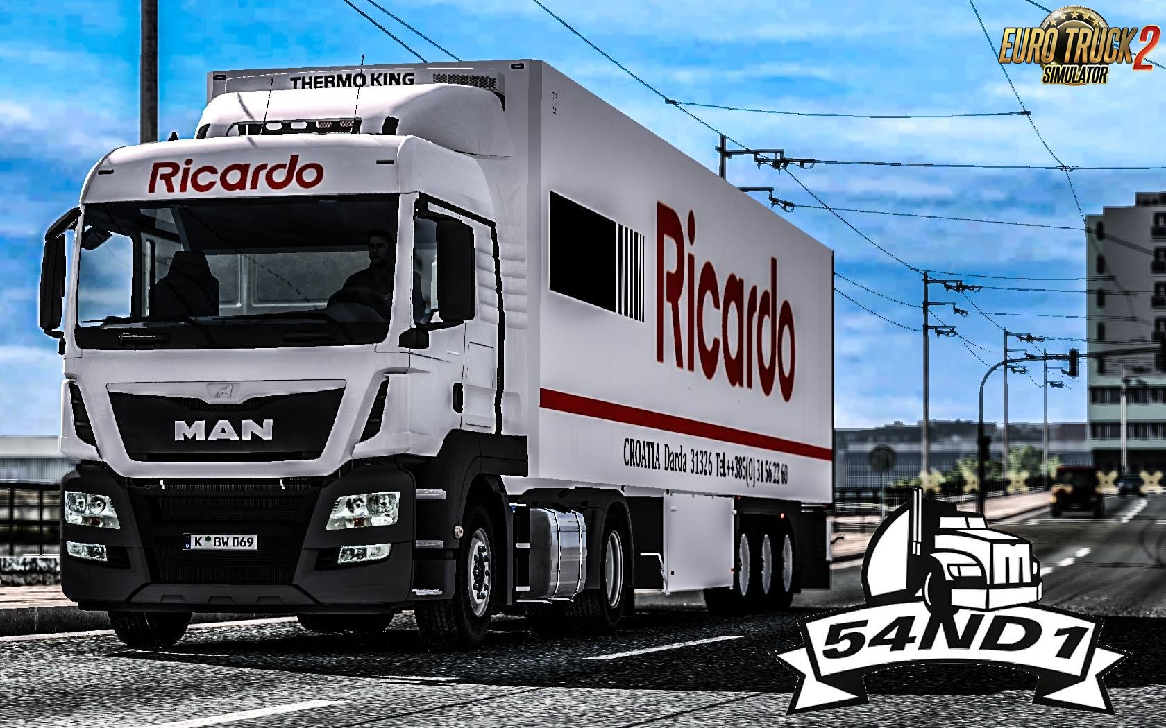 Ricardo Pack Skin for Man TGS Euro 6 + Trailer v1.0 (1.26.x)